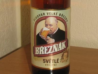 Уроки чешского (Breznak Svetle)